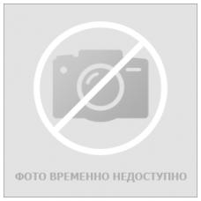 Административный регламент ФСНТ предоставления гос. Услуги по лицензир. деятельн. по перевозкам пассажиров АТ